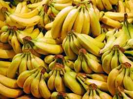 bananes-illustration